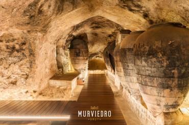 La Bodega Histórica de Murviedro incrementa sus visitas con un público ávido de emociones